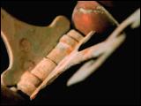 Video Clip - Rotating machinery